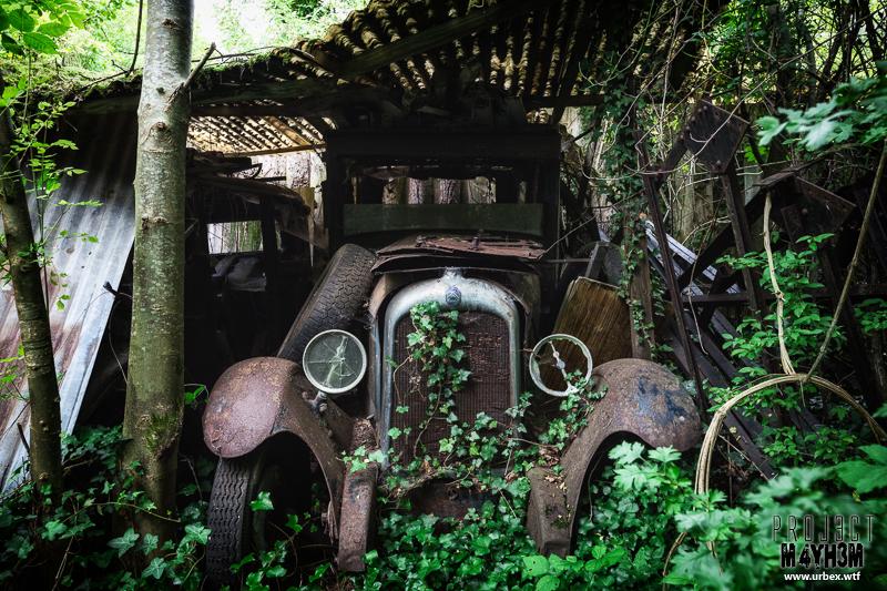 Cars-20.jpg