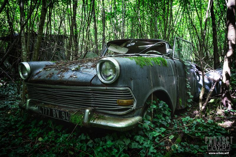 Cars-24.jpg