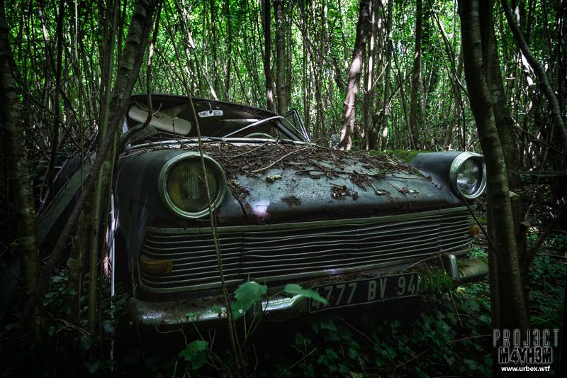 Cars-25.jpg