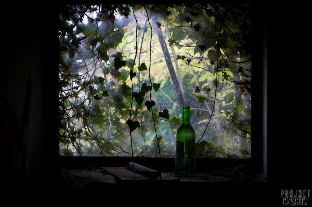 Dr X Manor House - Wine by the window