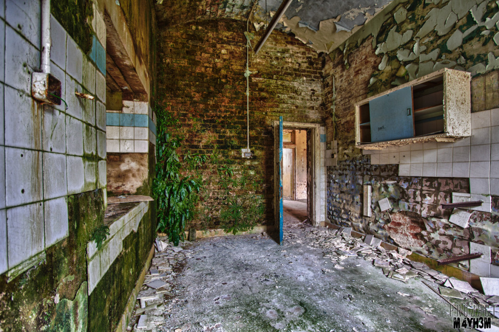 Wall of Weeds - Lincolnshire County Pauper Lunatic Asylum