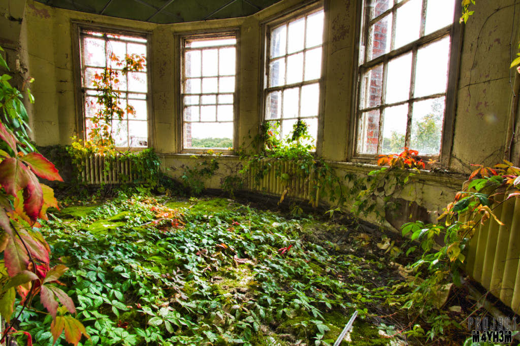 Whittingham Lunatic Asylum - Bay window garden