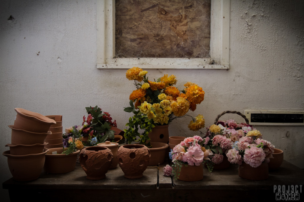 Holdinings Country Pottery - Flower arranging