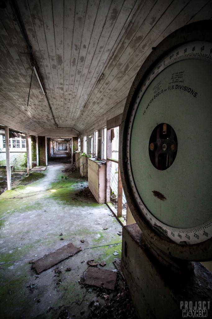 Severalls Lunatic Asylum - Scales