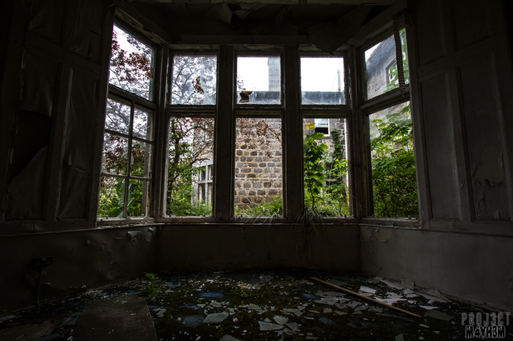 RCH Asylum Bay Window
