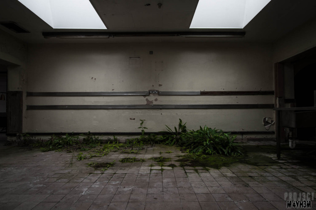 OM Asylum Kitchens