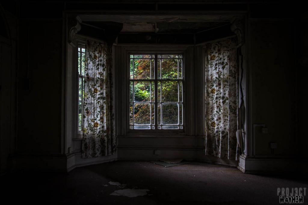 OM Asylum Bay Window