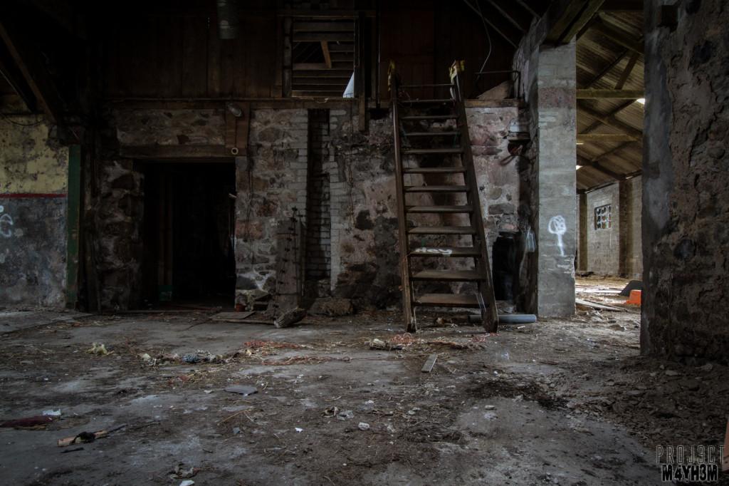 Teddy Bear Cottage