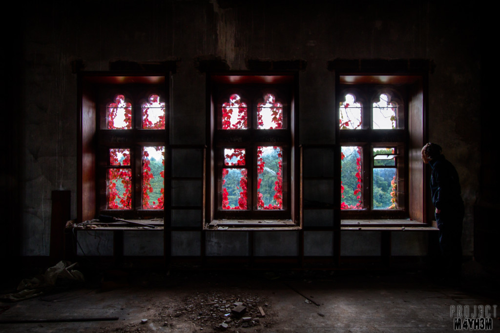 St Josephs Seminary Upholland - Red Ivy Windows