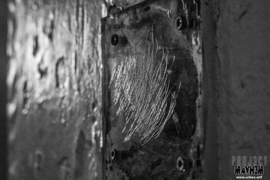 Prison H15 France Scratches