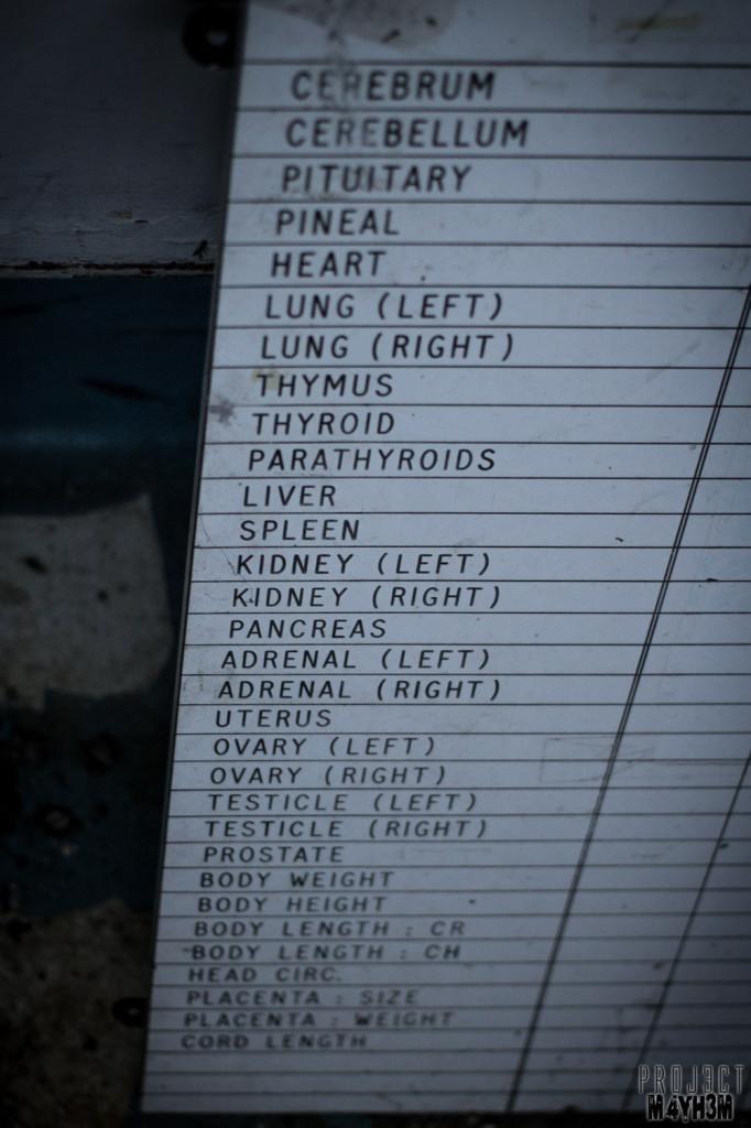 Morgue P Body Parts Chart