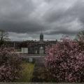 Connacht District Lunatic Asylum aka St Brigid's Psychiatric Hospital